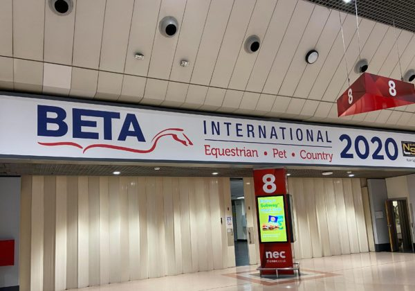 BETA 2020